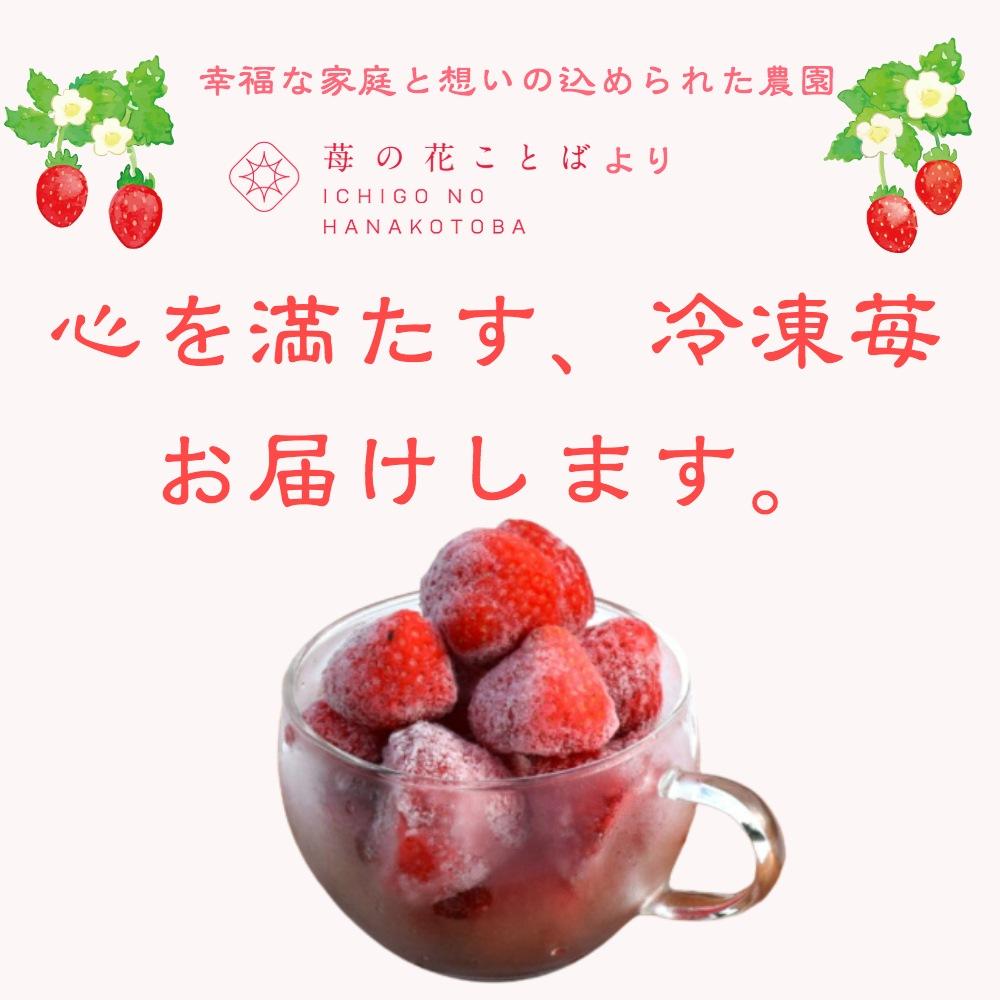 心を満たす冷凍苺お届けします。