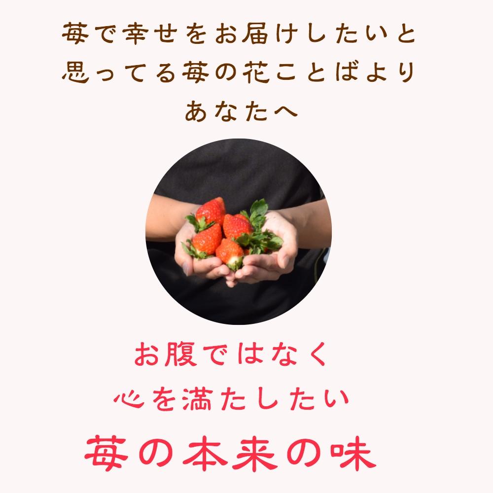苺で幸せをお届けしたいと思っている苺の花ことばよりあなたへ 心を満たしたい苺本来の味