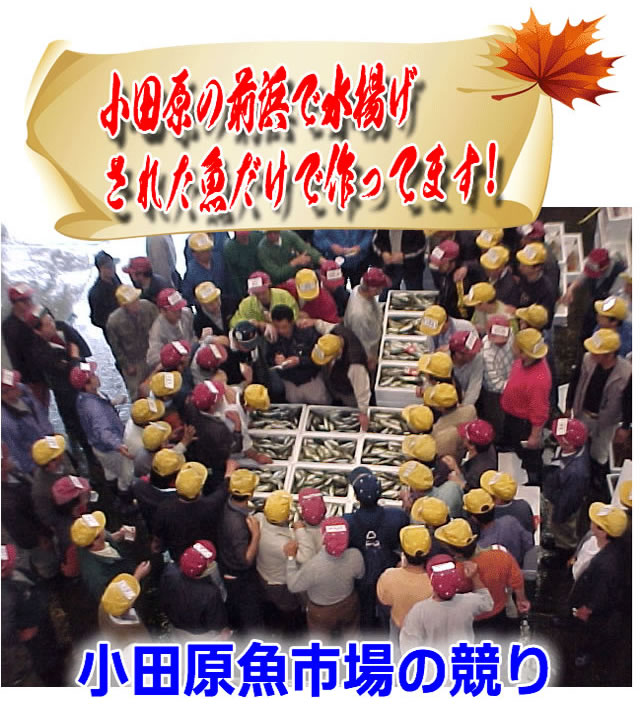 小田原魚市場のセリの様子