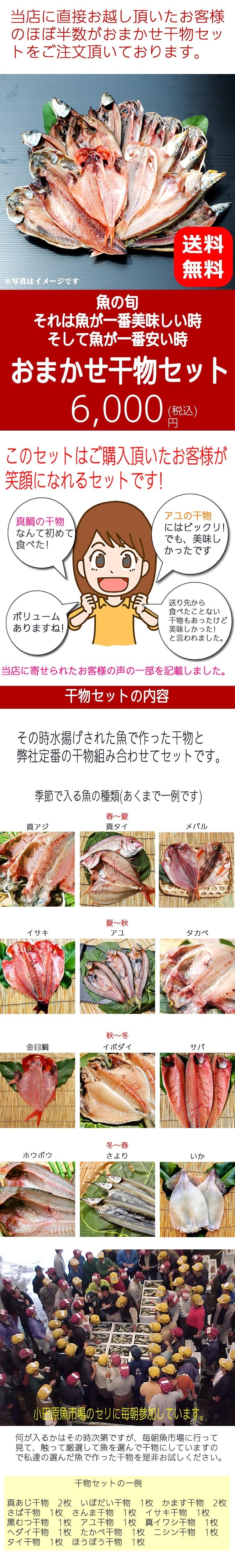 何が入るかわかりませんが、魚は安い時が一番美味い、所謂「旬」となります。毎朝小田原の魚市場に行って、魚を見て、自社加工場で干物を生産しているからこそできるこのおまかせ干物セット おやっ?と思うひものが入るかもしれません。