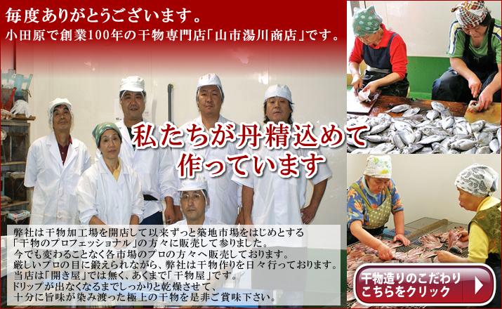 小田原で創業100年の干物屋です。