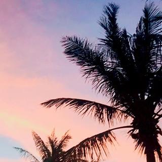 夕方の写真