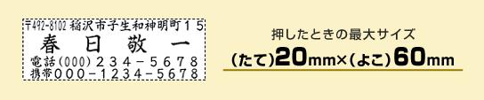 住所印2060号【個人用】(たて20mm×よこ60mm)