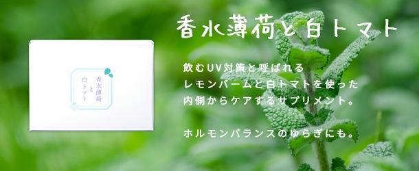 新商品香水薄荷と白トマト