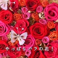 やっぱりバラの花!