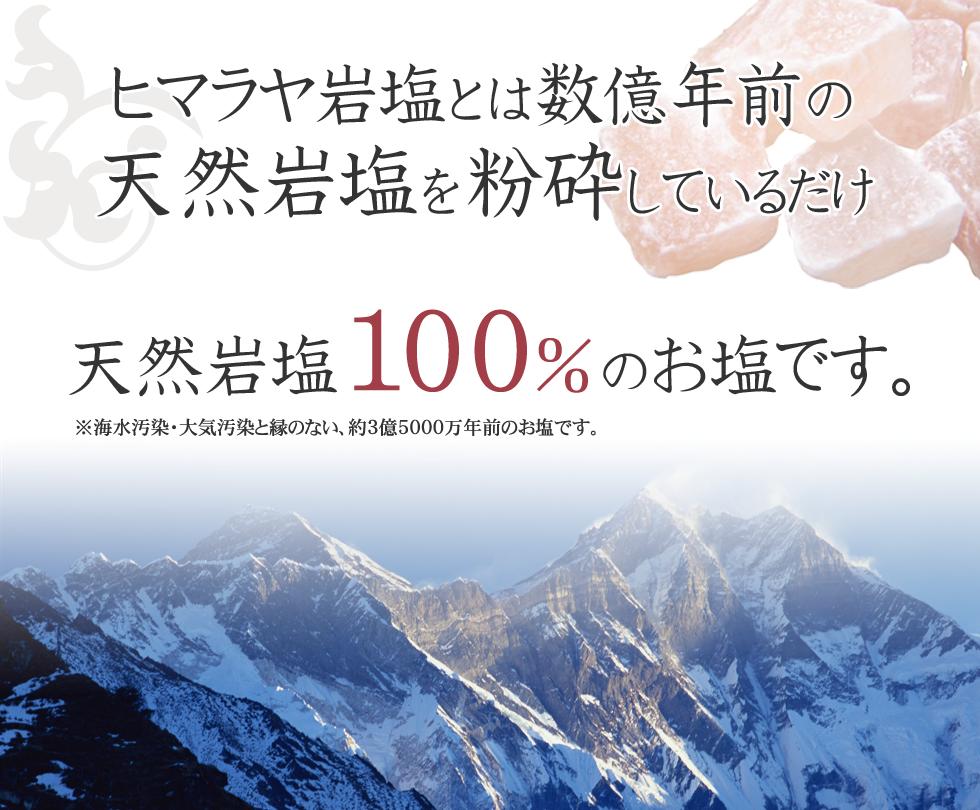 天然岩塩100%