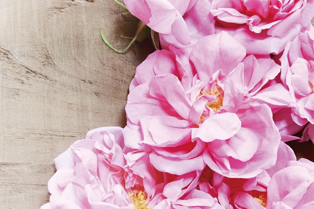 毎日の化粧が楽しくなる「上品なバラの香り」