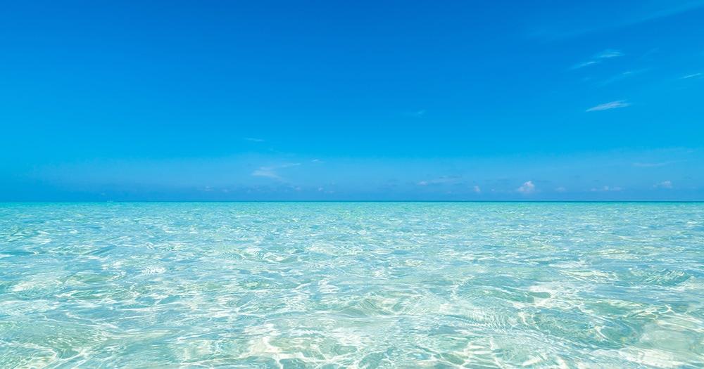 美と健康をはぐくむ海の力