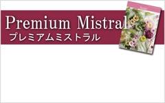 選べるギフト ミストラル 山口県光市本店のカタログギフト通販