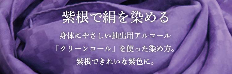 硬紫根で絹を染める
