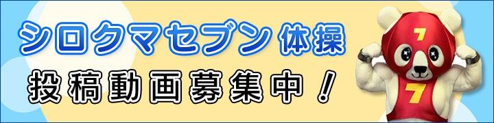 shirokumataisou.jpg