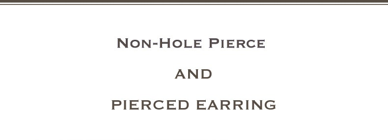 Non-Hole Pierce and Pierced Earring