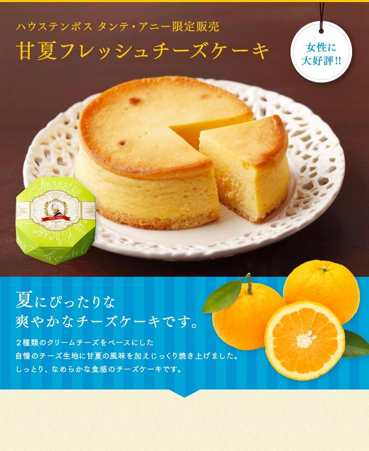 ハウステンボス タンテ・アニー限定販売 甘夏フレッシュチーズケーキ