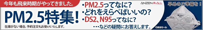 PM2.5特集!PM2.5対応マスクの選び方、お答えします。