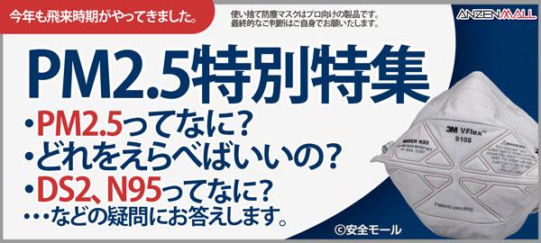 PM2.5特別特集。PM2.5ってなに?どれを選べばいいの?DS2、N95ってなに?・・・などの疑問にお答えします。