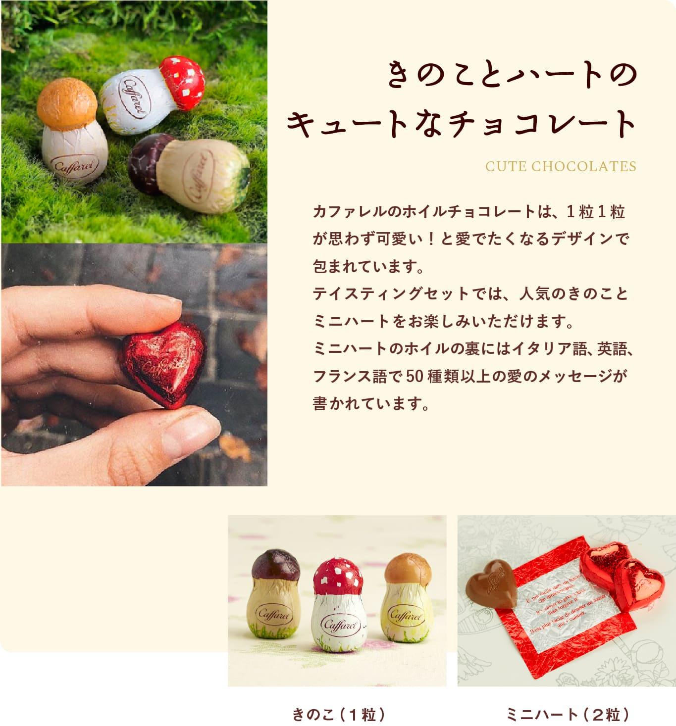 送料無料可愛いきのこのチョコレートお試しセット