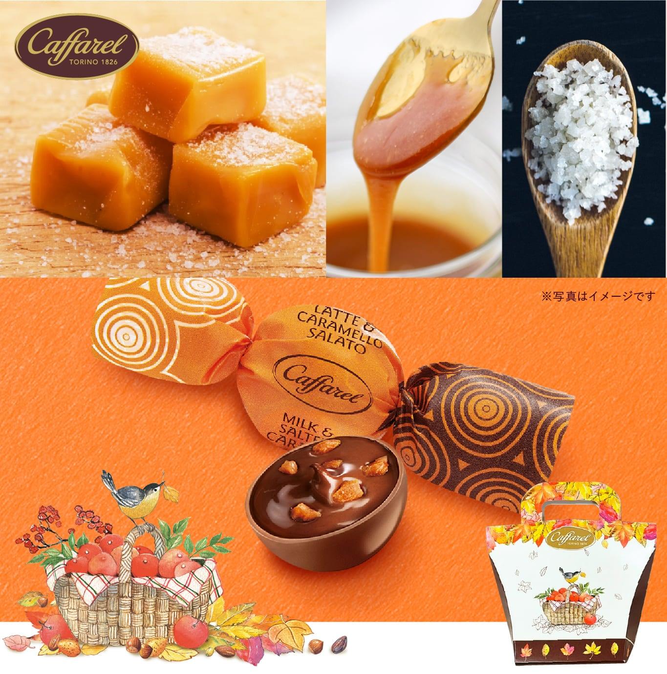 カファレル秋のキャラメルソルテッドチョコレート