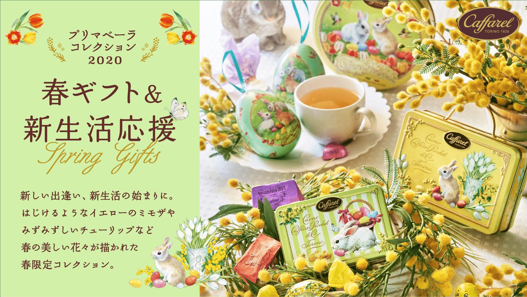2020春のお菓子チョコレートギフトプリマベーラ
