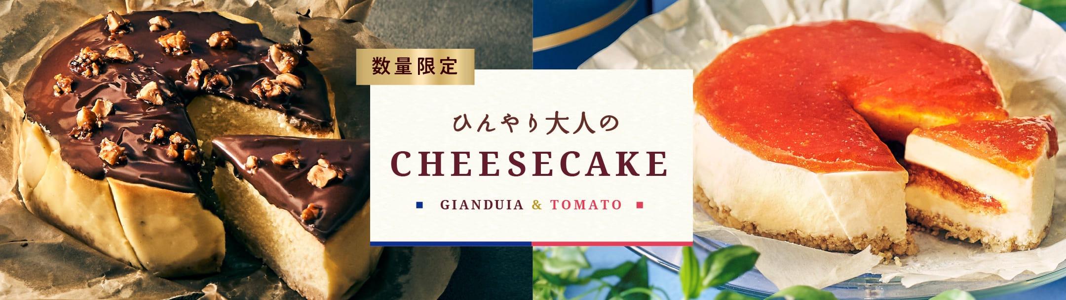 お取り寄せチーズケーキジャンドゥーヤ