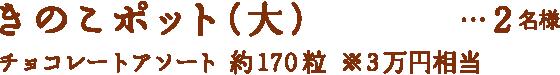 限定焼き菓子 ジャンドゥーヤコット