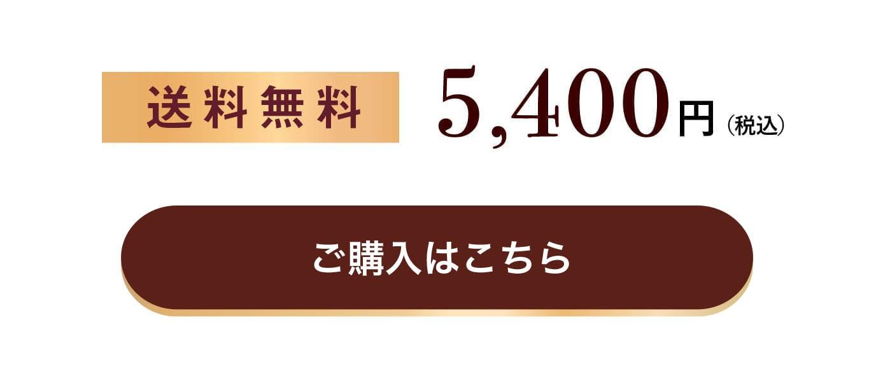 送料無料5,400円