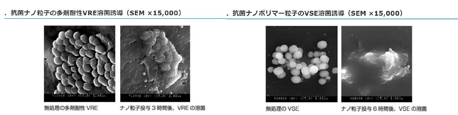 ・抗菌ナノ粒子の多剤VRE溶菌誘導・抗菌ナノポリマー粒子のVSE溶菌誘導