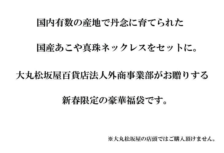 大丸松坂屋百貨店 法人外商事業部 国産大珠あこや真珠 豪華4点福袋