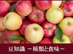 りんごの豆知識〜健康と美容編〜