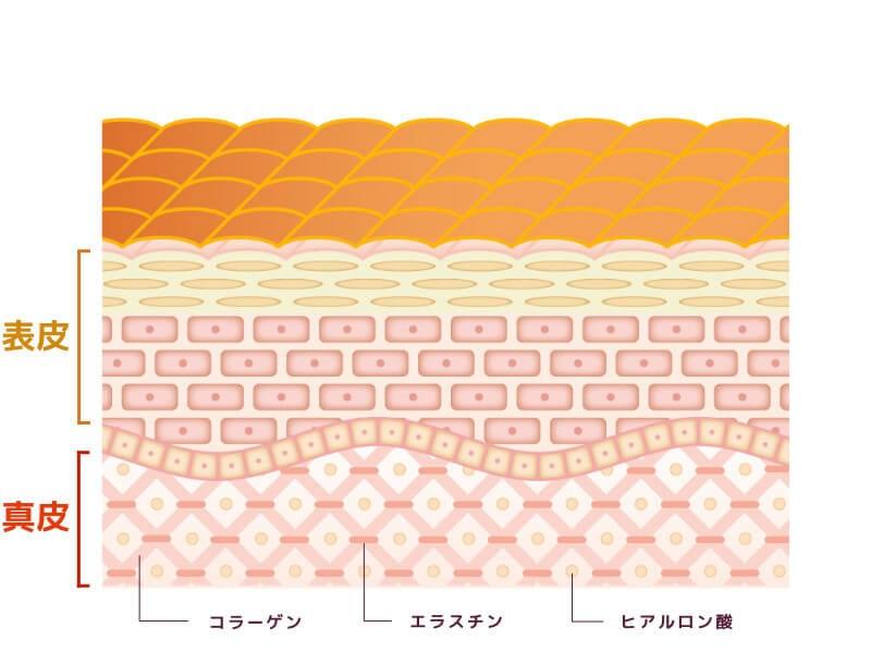 一般的なハンドクリームが肌表面をコーティングするイメージ図