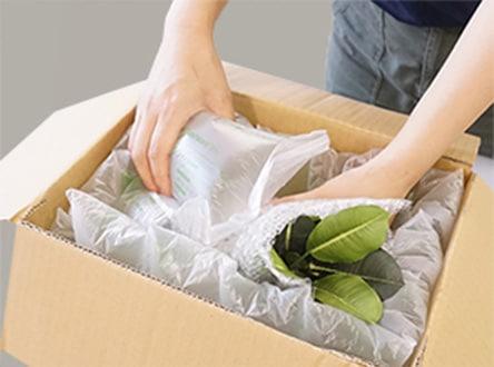 植物を梱包する様子