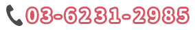 03-6231-2985