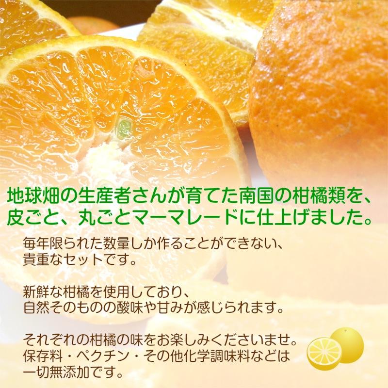 柑橘マーマレード