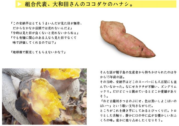安納芋の20年