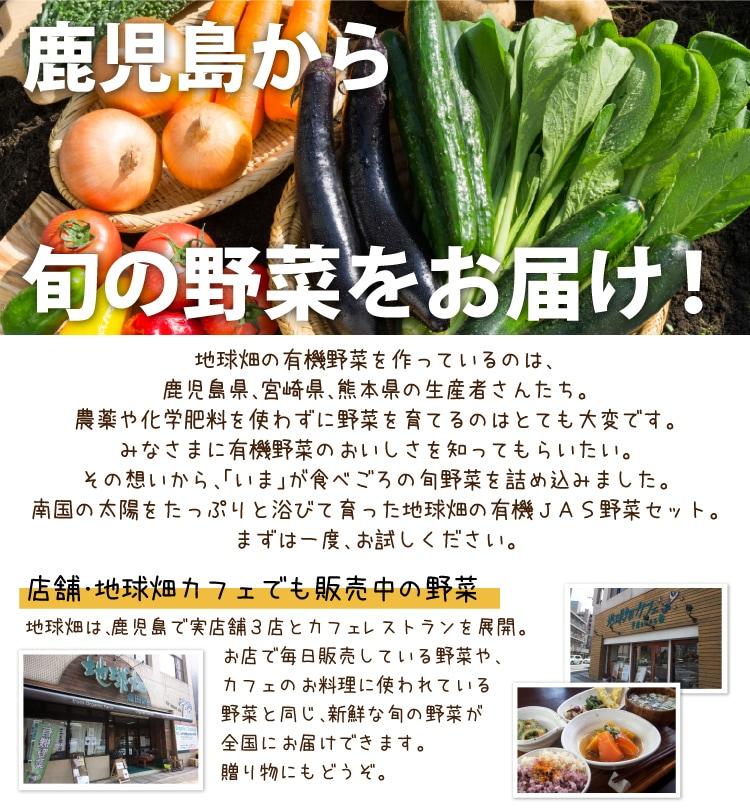 鹿児島の有機野菜通販