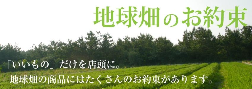 地球畑のお約束
