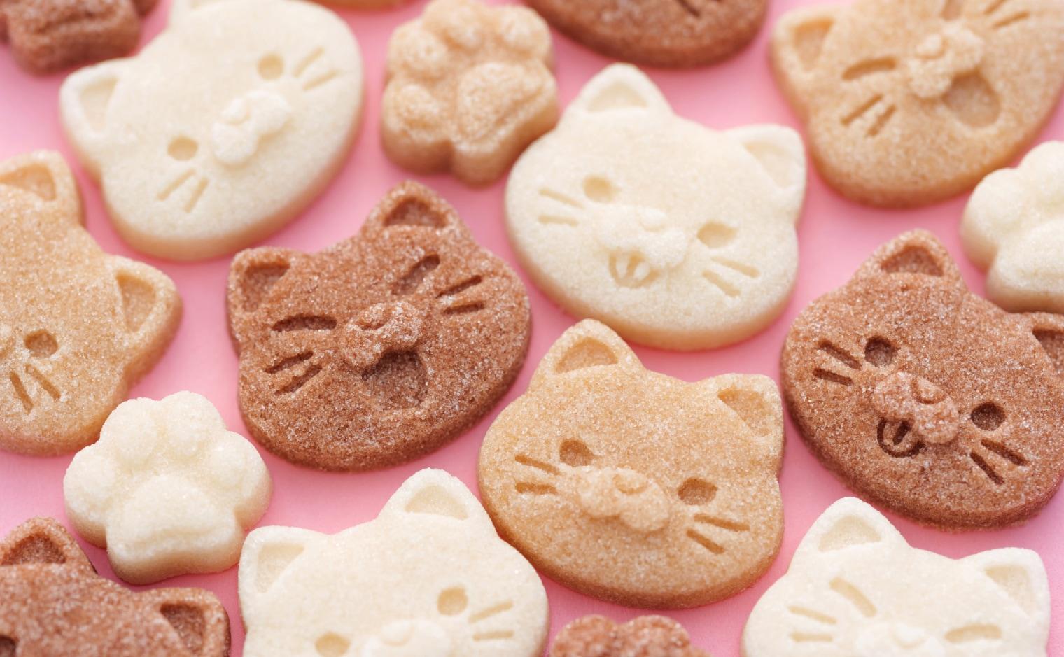 デザインシュガー,物語のある砂糖,かわいい,可愛い,手土産,ご挨拶,アニマル,動物,animal,ねこ,猫,喫茶,カフェ,癒し,顔,肉球,表情