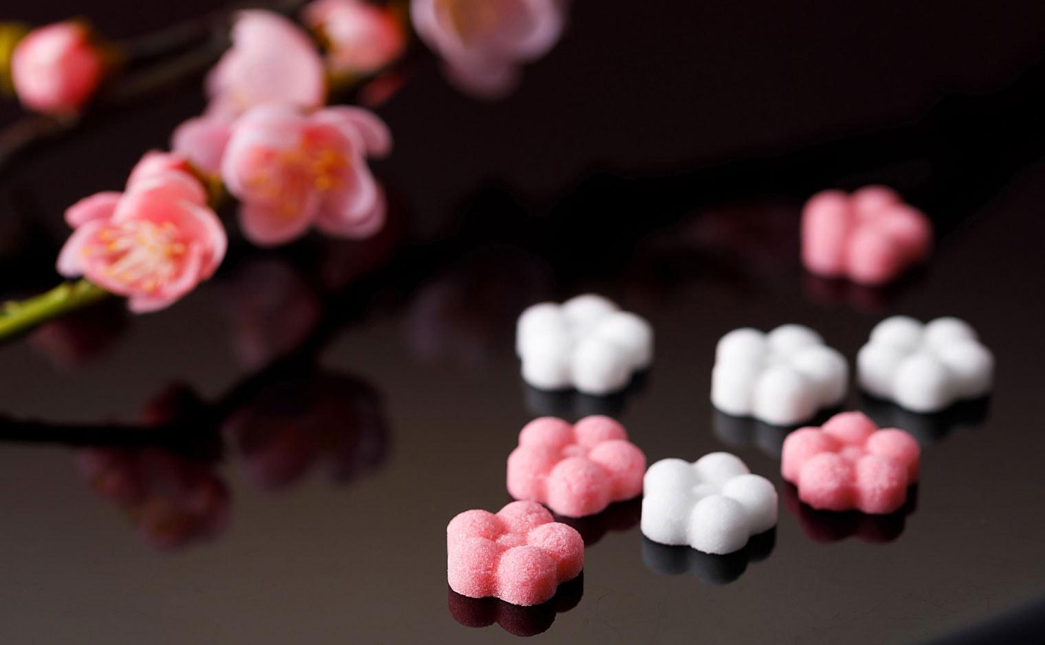 デザインシュガー,物語のある砂糖,かわいい,可愛い,角砂糖,春,日和,花