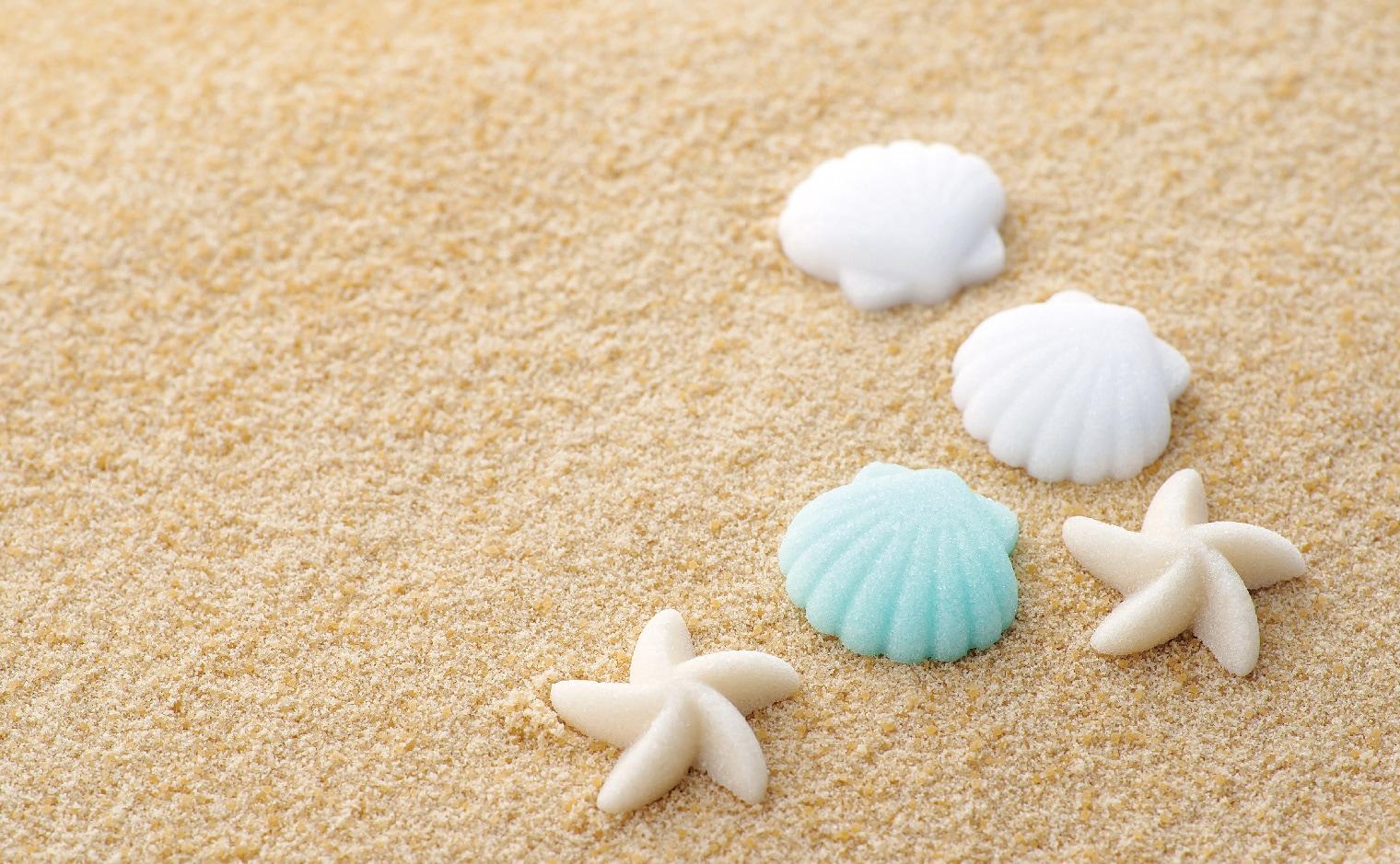 デザインシュガー,物語のある砂糖,貝殻,ヒトデ,海,真夏,サマー,ビーチ,海水浴,常夏,南国,砂浜