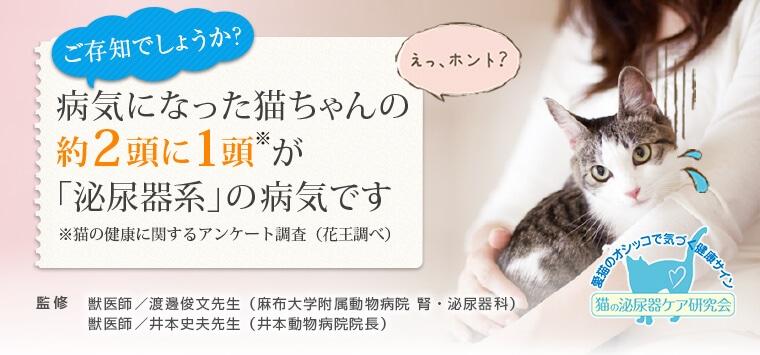 ご存知でしょうか?病気になった猫ちゃんの約2頭に1頭が「泌尿器系」の病気です※猫の健康に関するアンケート調査(花王調べ)