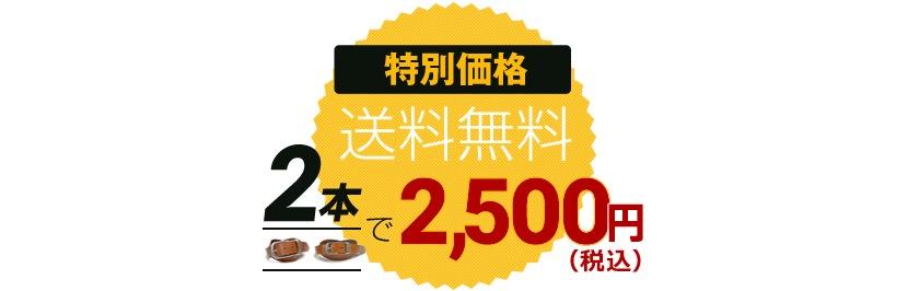 2本で2,500円(送料無料)
