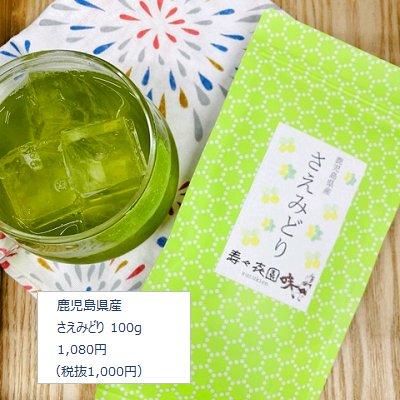 鹿児島県産 さえみどり 新茶 100g