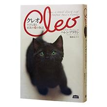 「クレオ」ある猫と家族の愛の物語