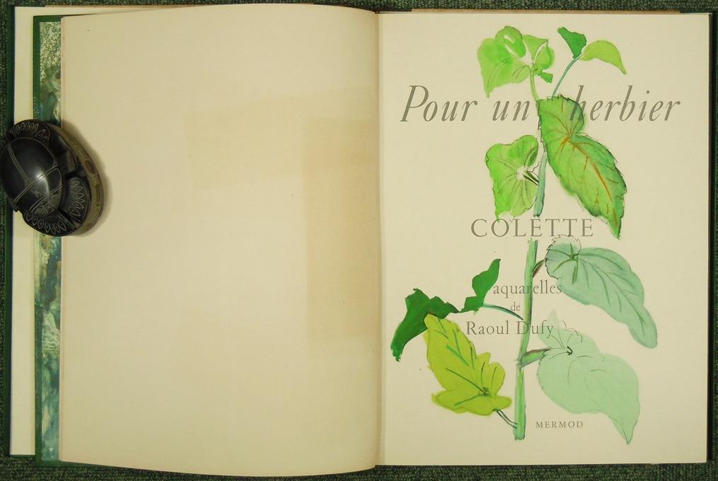 デュフィ 植物誌 POUR UN HERBIER