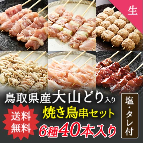 【送料無料】人気焼き鳥串9種45本セット【生タイプ】