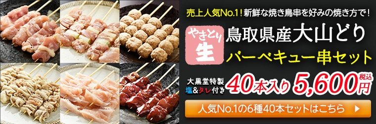 売上ナンバー1!新鮮な串を好みに焼ける鳥取県産大山鳥バーベキュー串セット45本入り(生)5,300円税込