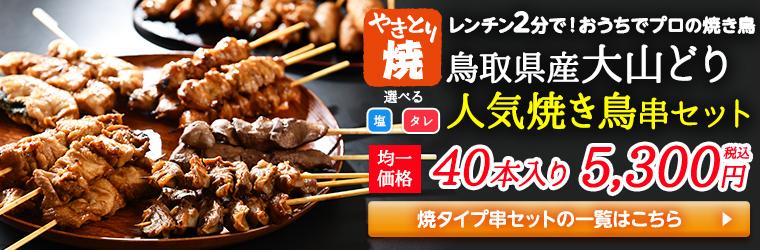 レンチン1分で!おうちでプロの焼き鳥 鳥取県産大山どり 人気焼き鳥串セット40本の一覧へ