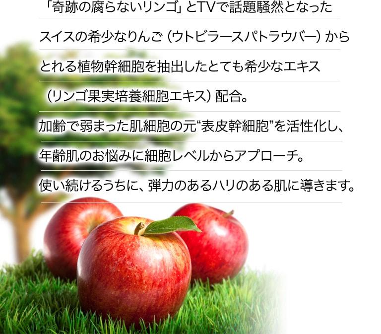 """奇跡の腐らないリンゴとTVで話題騒然となったスイスの希少なりんご(ウトビラースパトラウバー)からとれる植物幹細胞を抽出したとても希少なエキス(リンゴ果実培養細胞エキス)配合。加齢で弱まった肌細胞の元""""表皮幹細胞""""を活性化し、シワ・たるみを細胞レベルから改善。使い続けるうちに、弾力のあるふっくらぷるぷる肌を実現します。"""