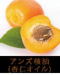 アンズ核油(杏仁オイル)