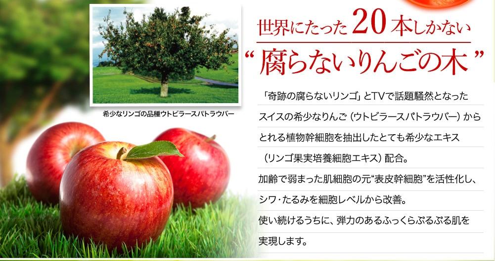"""世界にたった20本しかない""""腐らないりんごの木"""" 希少なリンゴの品種ウトビラースパトラウバー 「奇跡の腐らないリンゴ」とTVで話題騒然となったスイスの希少なりんご(ウトビラースパトラウバー)からとれる植物幹細胞を抽出したとても希少なエキス(リンゴ果実培養細胞エキス)配合。加齢で弱まった肌細胞の元""""表皮幹細胞""""を活性化し、シワ・たるみを細胞レベルから改善。使い続けるうちに、弾力のあるふっくらぷるぷる肌を実現します。"""