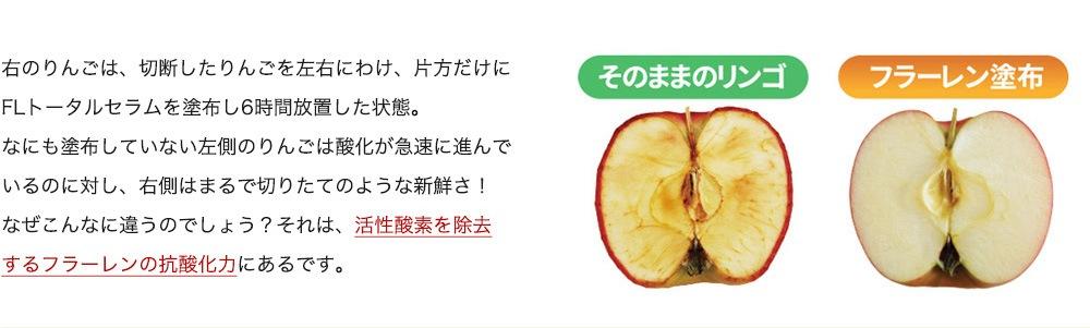 右のりんごは、切断したりんごを左右にわけ、片方だけにFLトータルセラムを塗布し6時間放置した状態。なにも塗布していない左側のりんごは酸化が急速に進んでいるのに対し、右側はまるで切りたてのような新鮮さ!なぜこんなに違うのでしょう?それは、活性酸素を除去するフラーレンの抗酸化力にあるです。